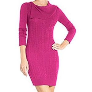 BCBGMaxAzria Sahana Sweater Dress